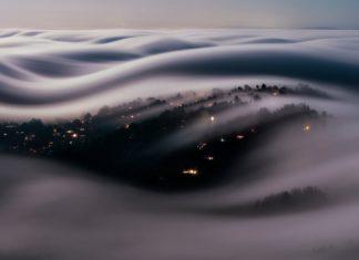 f o g · f i n g e r s | marin county, california | ©Lorenzo Montezemolo